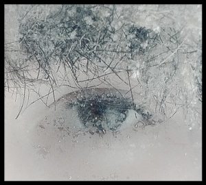 Frost covered eye.