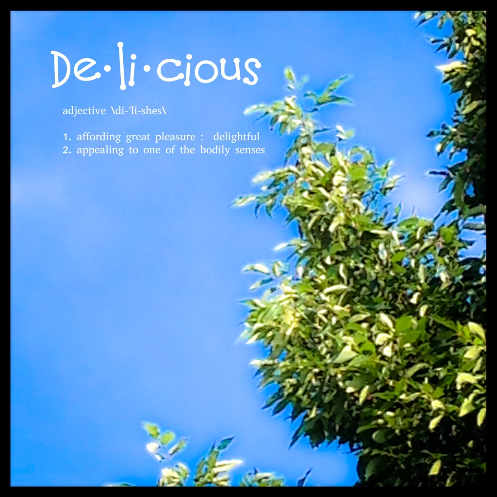 Tree top against blue sky with the word delicious in the air