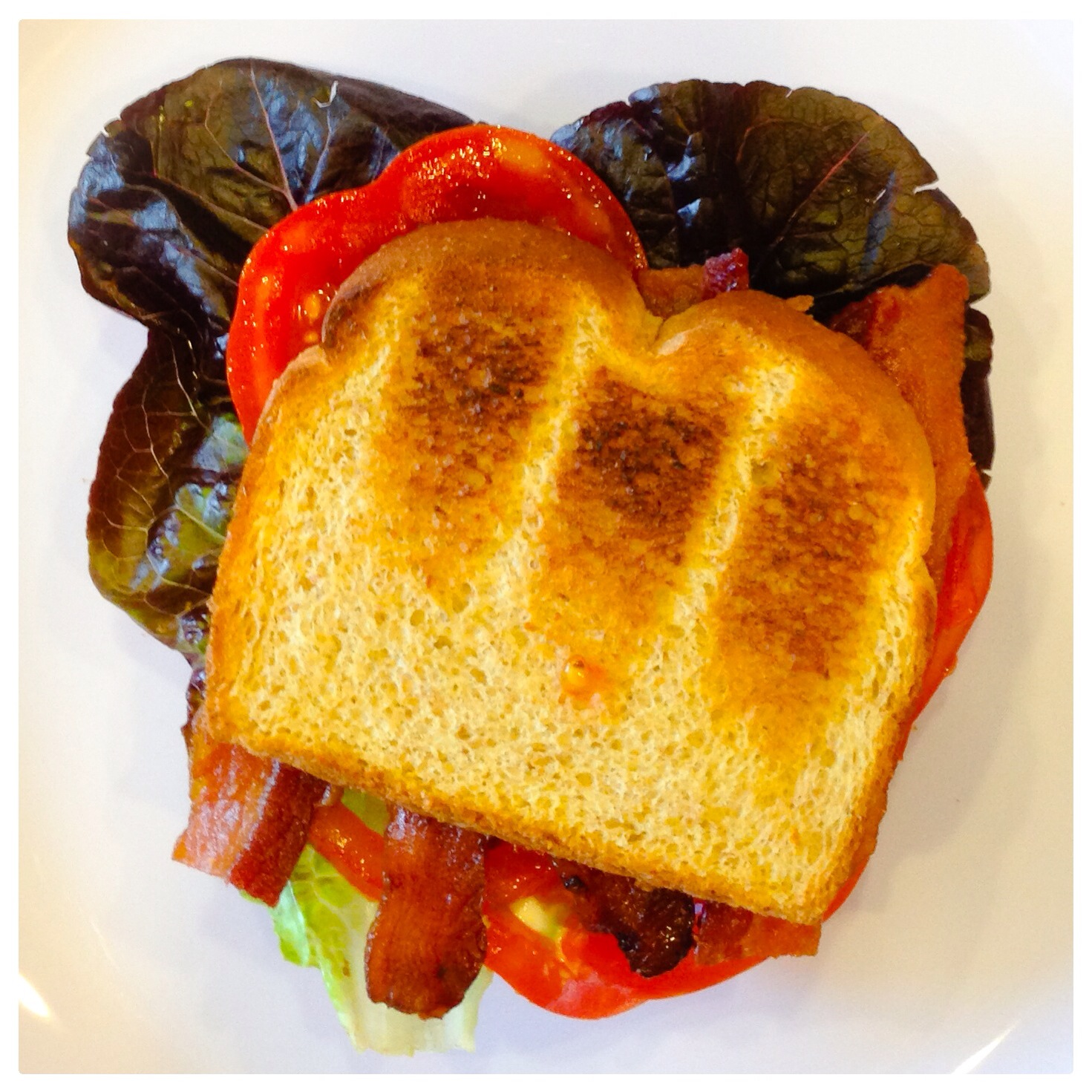 Picture of a BLT