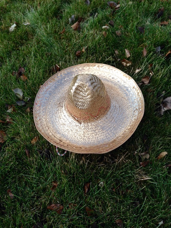 Sombrero painted gold in green grass.